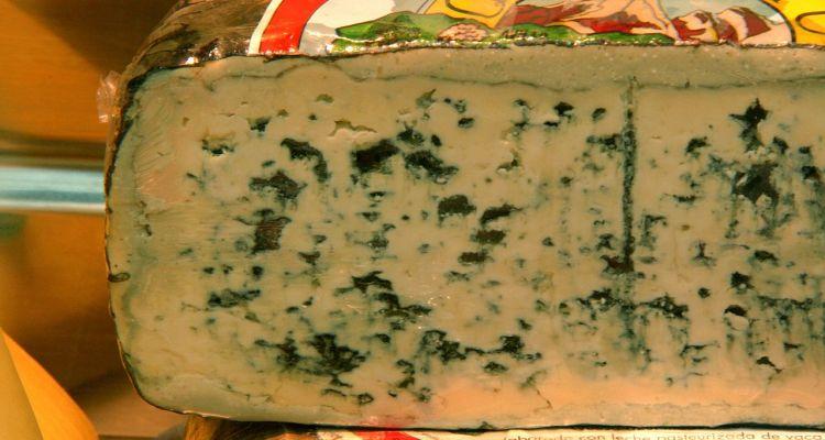 Wrap met rosbief en blauwe Kaas